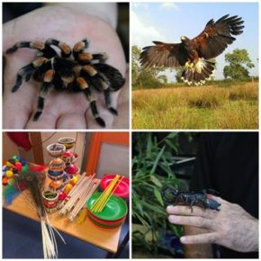 The Gardens Group announces free February half-term events
