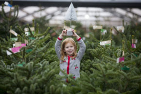 Dobbies reports 21% uplift over Christmas