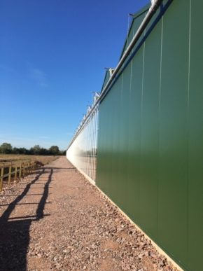 Hawkesmill Nurseries looks to future with new glasshouse
