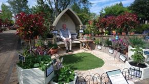 Easy gardening ideas from Squire's