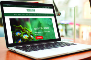 Swan Retail aim to stand out in Ecommerce
