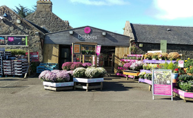 Dobbies sells two of its smallest centres to Caulders