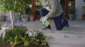 Evergreen takes to TV screens with new £3.5m ad campaign